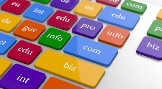 domain (alan adı) nedir ?